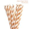 25pcs paper straws-20