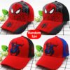 1pc Hat Random